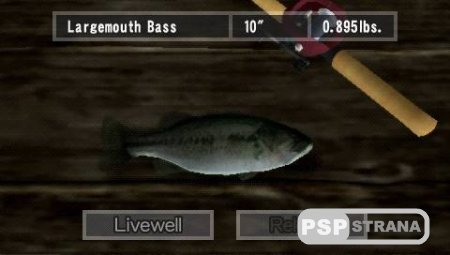 Reel Fishing The Great Outdoors (PSP/ENG)