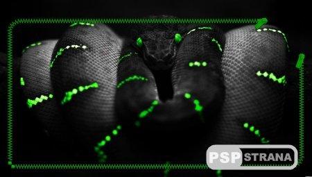 Обои PS Vita Green Snake