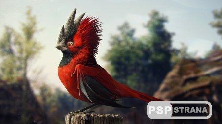 CD Projekt Red трудится над ещё одной RPG AAA-класса