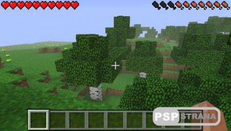 Minecraft PSP Edition v2.0.6 fix [FanVersion][HomeBrew][2018]