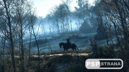 HDR-патч для PS4-версии The Witcher 3 задерживается